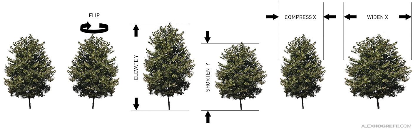Tree_tips_2_Stretch_distort